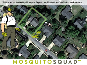 mosquito control tick control yard barrier spray Central Mass