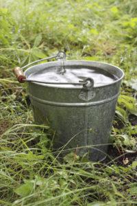 Bucket with rainwater