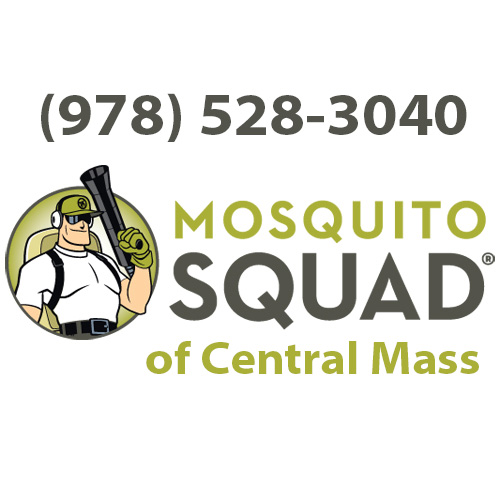 Should Massachusetts residents be concerned about Zika Virus in MA?